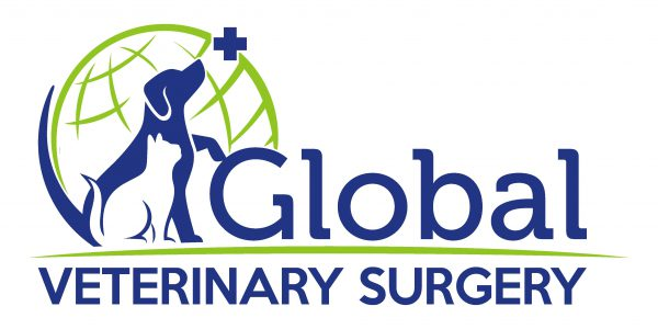 Global Veterinary Surgery
